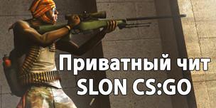 Приватный чит SLON для CS:GO - Доступ на 30 дней