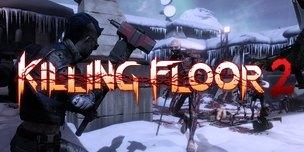 Killing Floor 2 КЛЮЧ